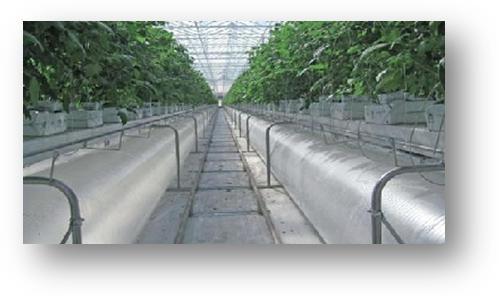 horticulture_1.jpg
